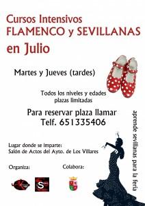 curso intensivo de flamencoysevillana-Julio2014